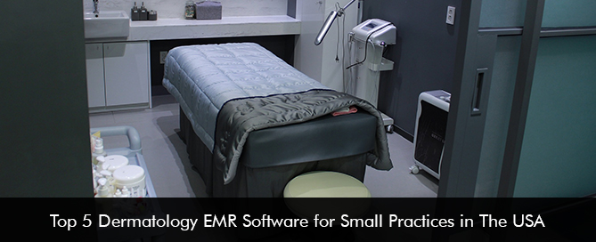 Top 5 Dermatology EMR Software for Small Practices in The USA