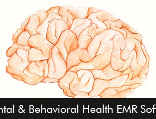 Top 10 Mental & Behavioral Health EMR Software 2020