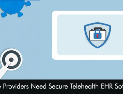 Why Healthcare Providers Need Secure Telehealth EHR Software Solutions